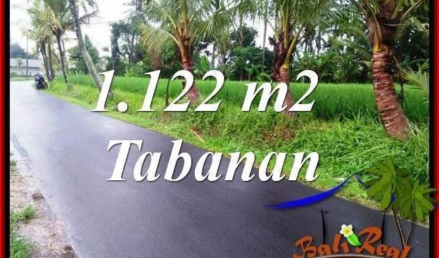 Investasi Properti, Dijual Murah Tanah di Tabanan Bali TJTB404