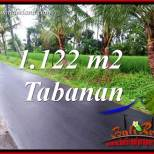 Tanah di Tabanan Bali Dijual Murah TJTB404