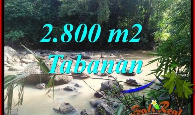 JUAL Murah Tanah di Tabanan 28 Are View Kebun dan Sungai