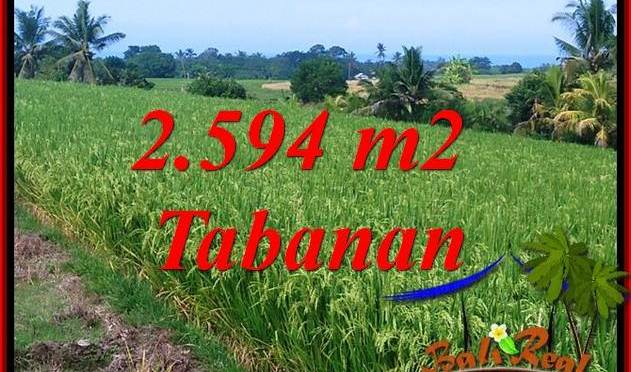 Tanah Dijual di Tabanan Bali 25.94 Are View Sawah, Gunung dan Sungai Kecil