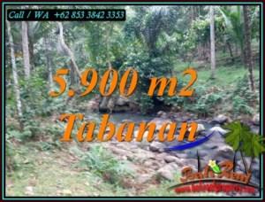 DIJUAL TANAH DI TABANAN BALI TJTB458
