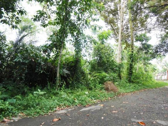 Land for sale in Ubud land