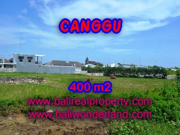 Jual tanah di Canggu Bali 400 m2 view sawah di Canggu Brawa