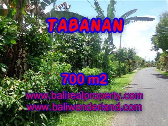 TANAH DI TABANAN BALI DIJUAL TJTB090 - PELUANG INVESTASI PROPERTY DI BALI