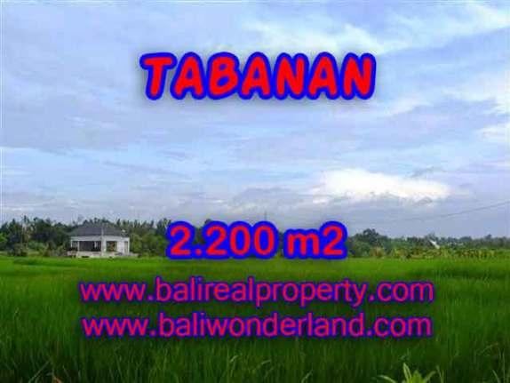 Murah ! Tanah di TABANAN Bali Dijual TJTB097