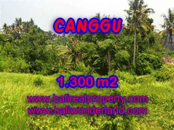 JUAL MURAH TANAH DI CANGGU BALI TJCG136 - PELUANG INVESTASI PROPERTY DI BALI