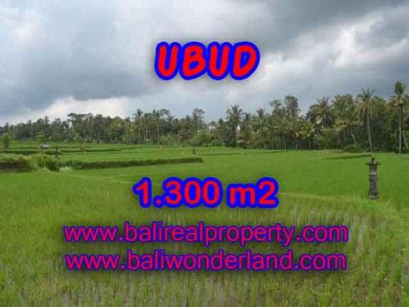 Murah ! Tanah di UBUD Bali Dijual Rp 3.000.000 / m2 - TJUB394