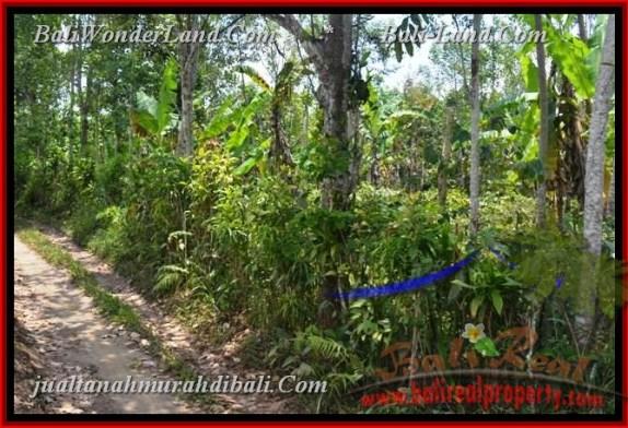 TJBD012 - JUAL TANAH MURAH DI BALI - LAND FOR SALE IN BALI 12