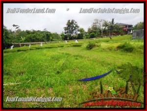 TANAH MURAH  di CANGGU BALI DIJUAL 1.000 m2  View Sawah dan sungai , lingkungan villa