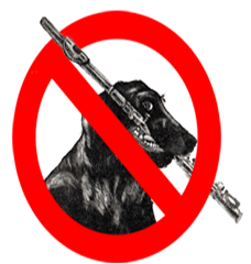 Prohibido Perroflautas