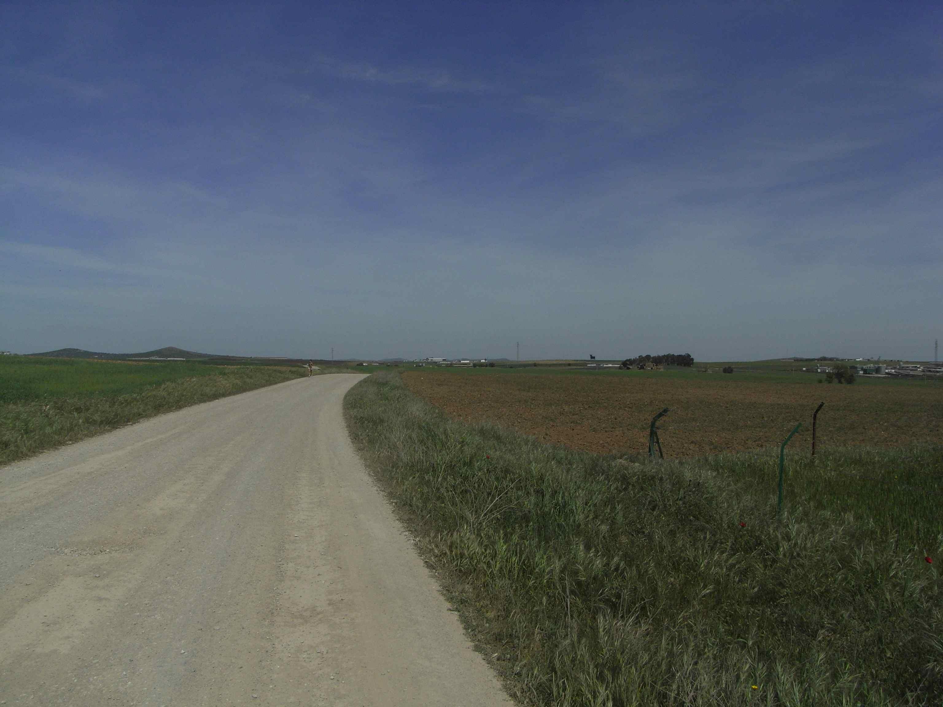 El paisaje va cambiando de la dehesa a los cereales