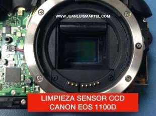 Limpiando el CCD de una camara Canon sin desmontar el CCD