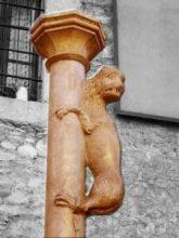 Girona - Cul de la lleona