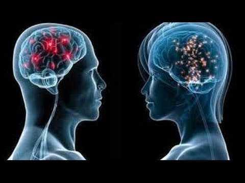 """Presentación de la obra """"Los secretos de nuestro cerebro"""""""