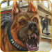 Download  US Police Dog Survival 1.6 Apk