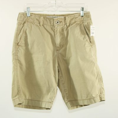 American Eagle Outfitters Classic Shorts | Size 30