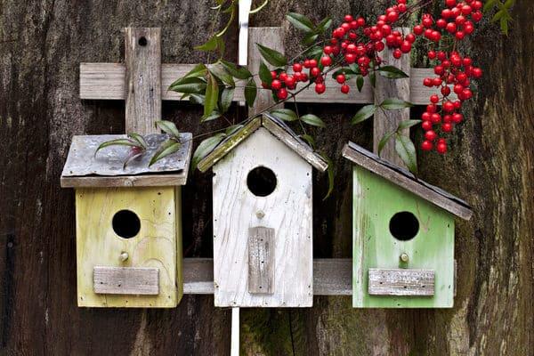 humor amid stress+birdhouses