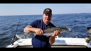 Photo of Man holding a Spanish Mackerel