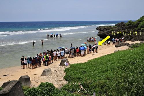 屏東小琉球:杉福潮間帶生態導覽