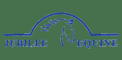 Blue_Overhead_Logo-removebg-preview
