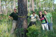 Sampling pine ECM roots in TX, 2012