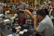 Dr. Jason Stajich describes Basidiobolus spore morphology in the ZyGOLife workshop at MSA 2017 in Athens, GA. July 2017