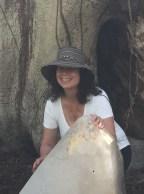 Ancient Ceiba tree with crystal