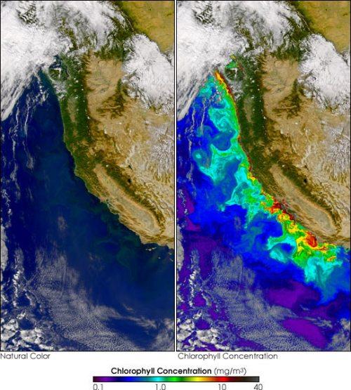 rud3 California_SEA_2004265
