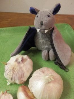 Garlic and Bram, the Vampire Bat