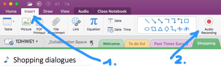 Recording an audio file with OneNote