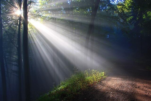 My Light Has Come                           #53