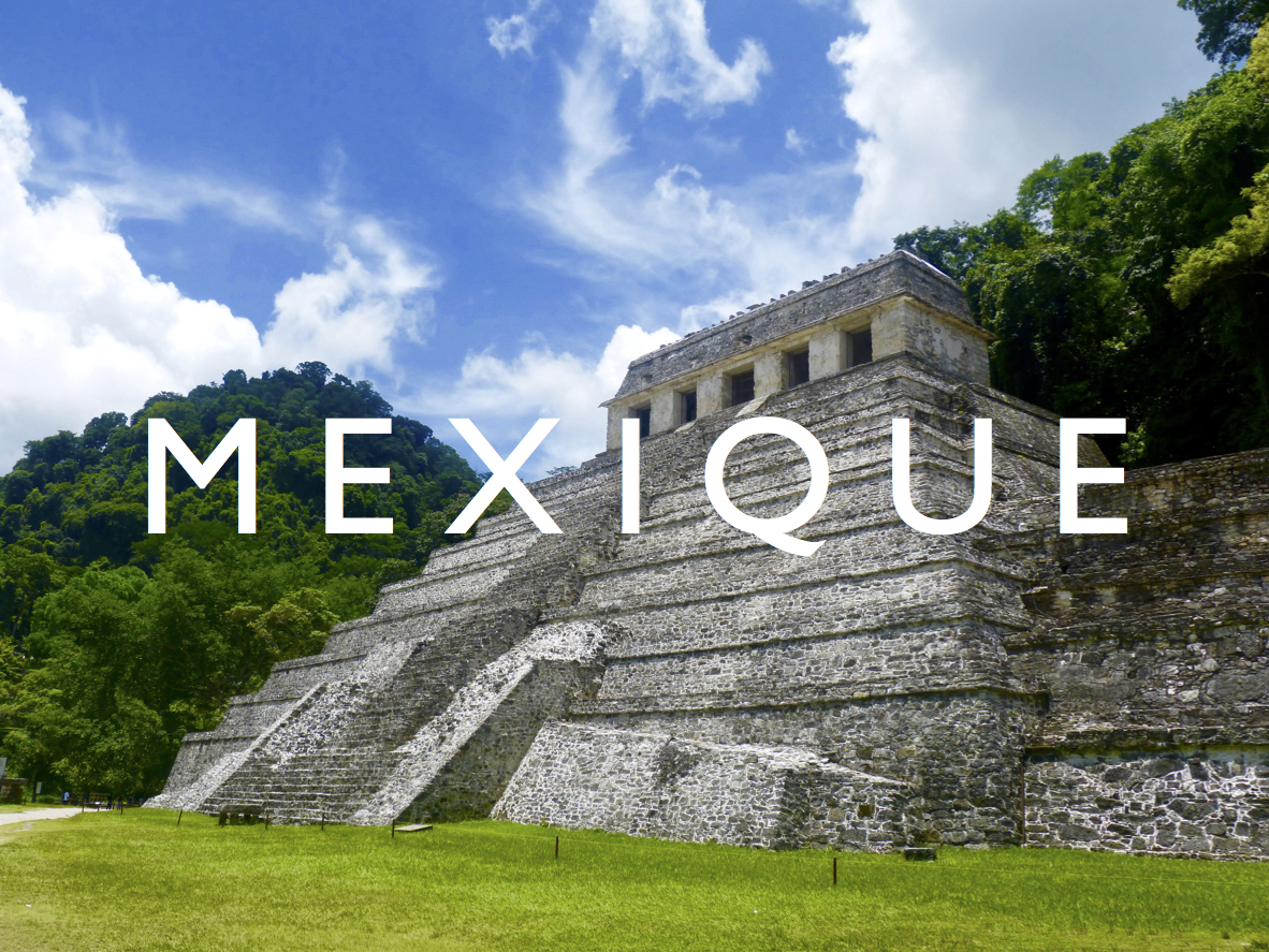 Read more about the article Mexique