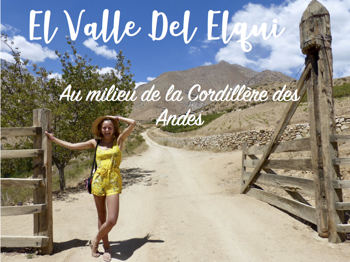 La Vallée de l'Elqui : Au milieu de la Cordillère des Andes