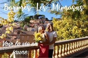 Voir la vie en jaune à Bormes-Les-Mimosas