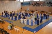 Liga Judo 2010