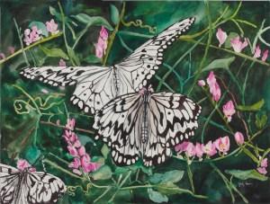 Butterflies Colorado Pavilion