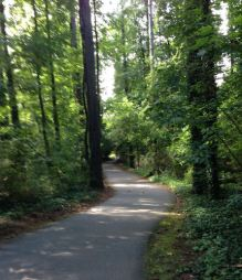 Walking trail in Don White Park