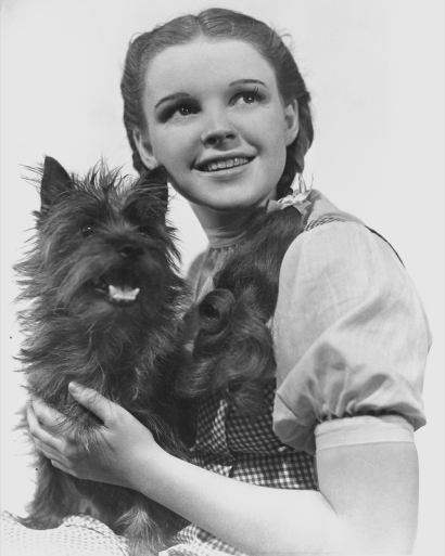 Dorothy-&-Toto-Red