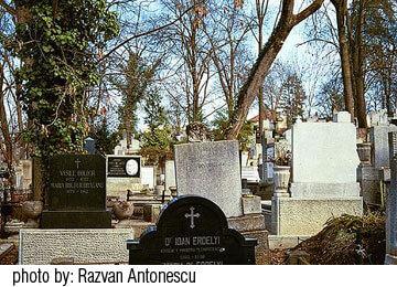 brochure graveyard