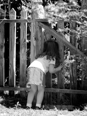 peek through fence