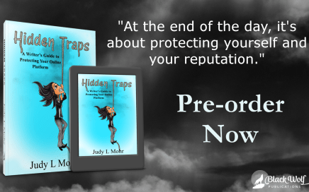 Pre-order Hidden Traps by Judy L Mohr