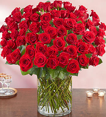 100 Premium Long Stem Red Roses Judys Village Flowers