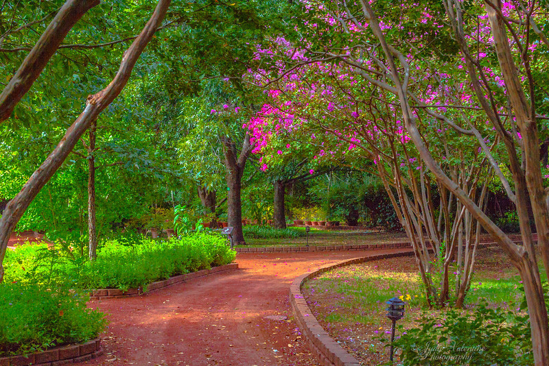 https://i1.wp.com/judyv.smugmug.com/Clark-Gardens/Clark-Gardens-2012/i-27RdhT6/0/L/JVP_20120831_ClarkGardens9840-L.jpg