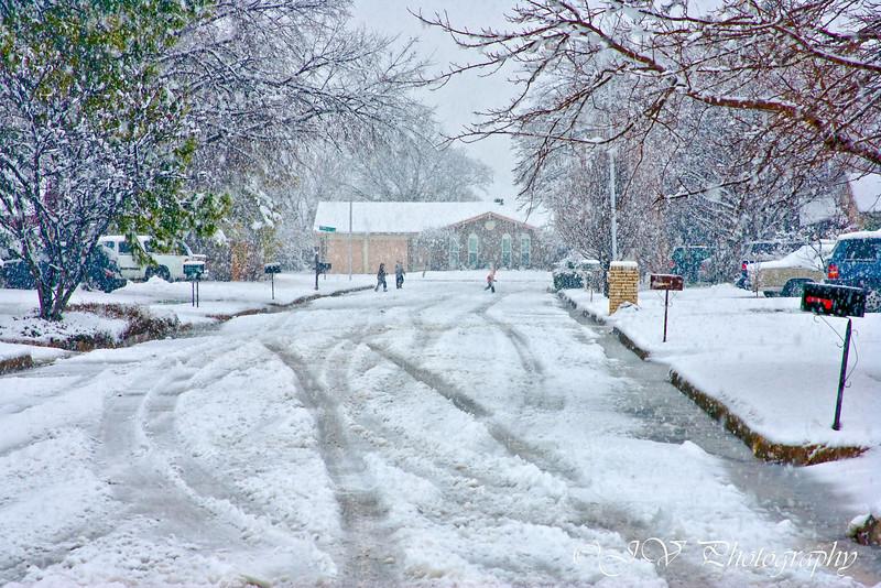 https://i1.wp.com/judyv.smugmug.com/Nature/Winter-in-Texas/i-zrdjvk2/0/L/JVP_20100211_1391-L.jpg