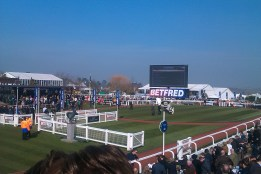 Parade ring before 1st race