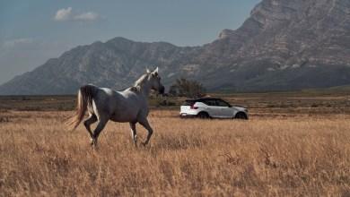 Photo of Volvo Cars strukturiert Executive Management um