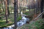 El río zigzagueando