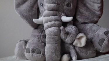 femke bosmans _ afbeelding olifant