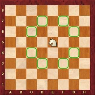 schaakpaard schaken juffrouw Femke