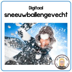 digitaal sneeuwballengevecht